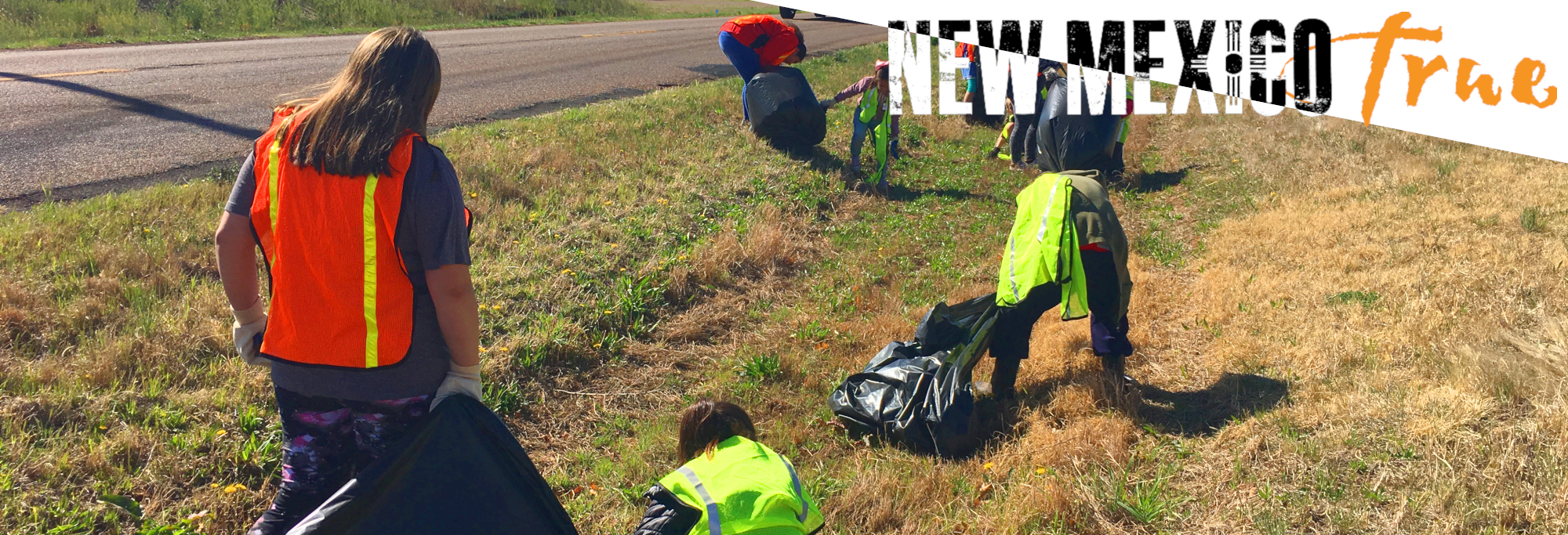 New Mexico True Road Cleanup Banner